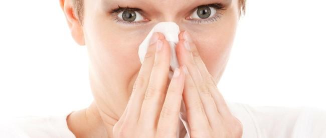 soczewki dla alergików